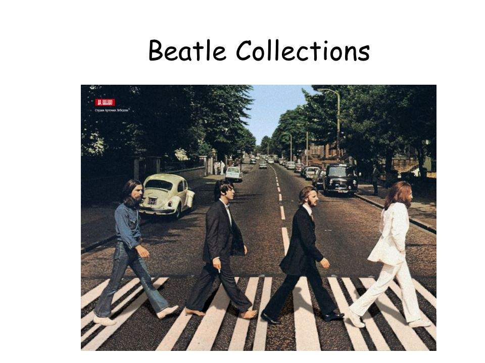 Beatle Collections