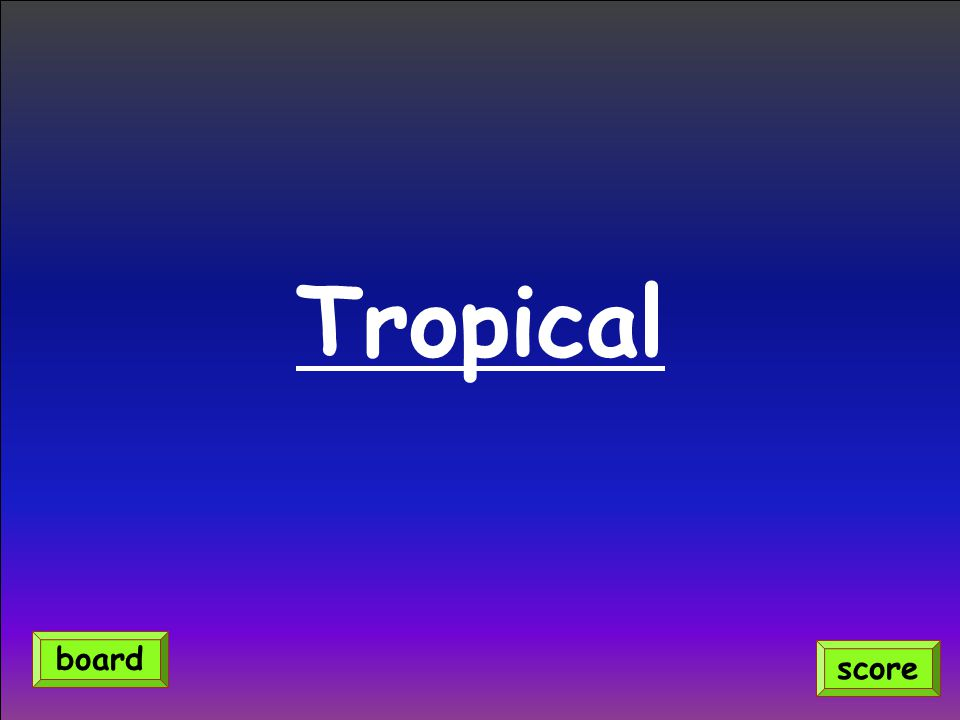 Tropical score board