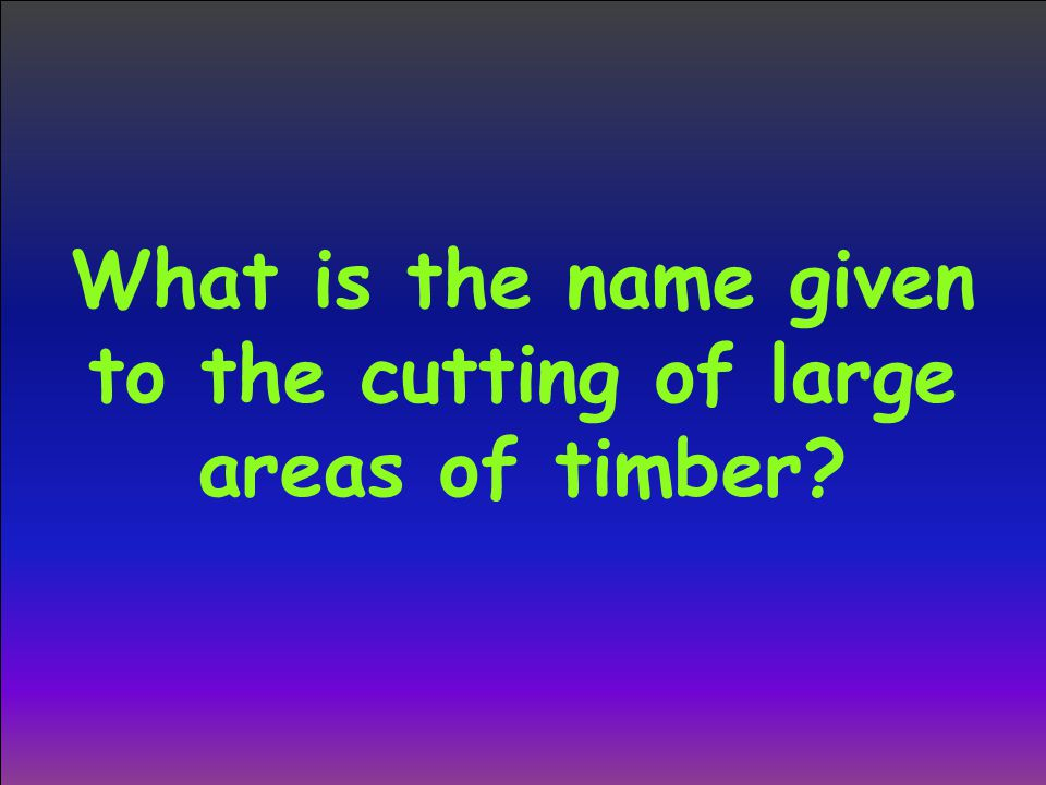 What is the name given to the cutting of large areas of timber