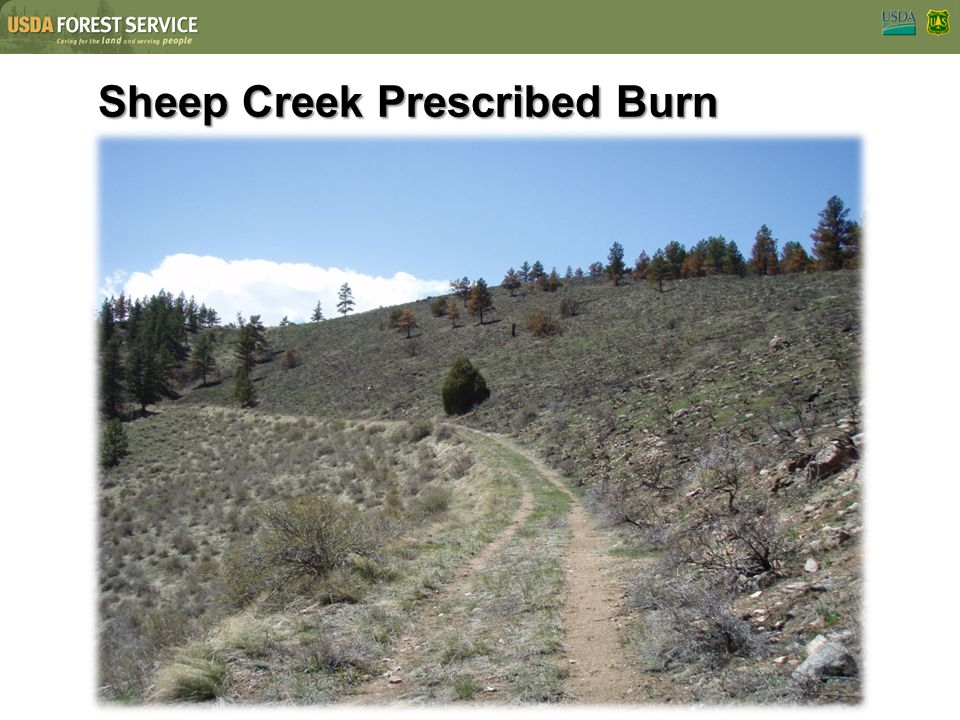 Sheep Creek Prescribed Burn