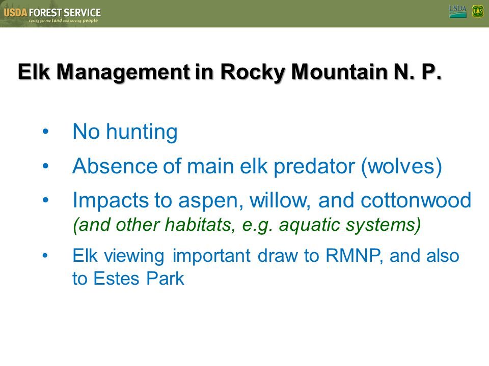Elk Management in Rocky Mountain N. P. No hunting Absence of main elk predator (wolves) Impacts to aspen, willow, and cottonwood (and other habitats,