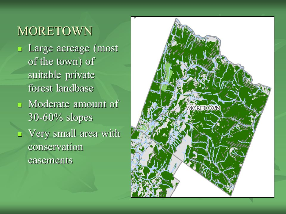 MORETOWN Large acreage (most of the town) of suitable private forest landbase Large acreage (most of the town) of suitable private forest landbase Mod