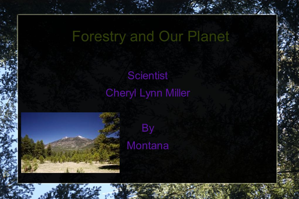 Forestry and Our Planet Scientist Cheryl Lynn Miller By Montana