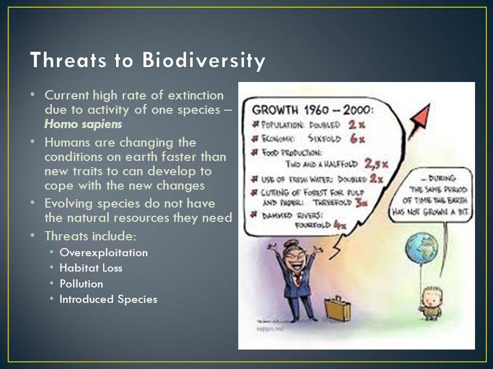 1.A 2.B 3.C 4.D Biodiversity and Conservation Chapter 5 Chapter Diagnostic Questions Which is not a renewable resource.