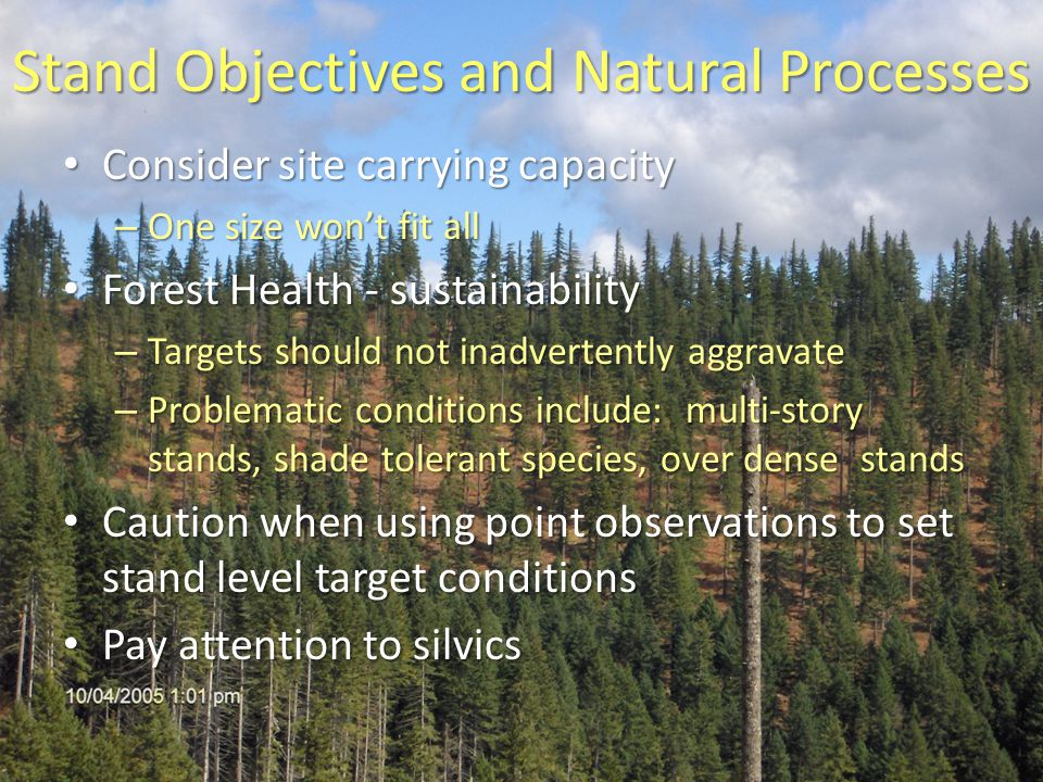 Stand Objectives and Natural Processes Consider site carrying capacity Consider site carrying capacity – One size won't fit all Forest Health - sustainability Forest Health - sustainability – Targets should not inadvertently aggravate – Problematic conditions include: multi-story stands, shade tolerant species, over dense stands Caution when using point observations to set stand level target conditions Caution when using point observations to set stand level target conditions Pay attention to silvics Pay attention to silvics