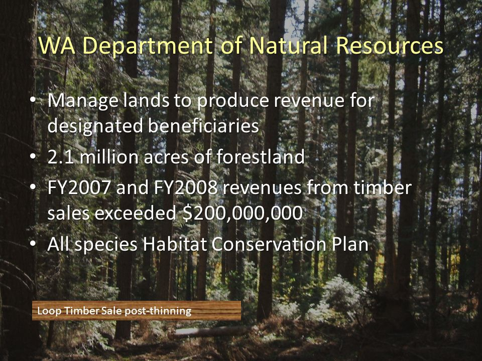WA Department of Natural Resources Manage lands to produce revenue for designated beneficiaries Manage lands to produce revenue for designated beneficiaries 2.1 million acres of forestland 2.1 million acres of forestland FY2007 and FY2008 revenues from timber sales exceeded $200,000,000 FY2007 and FY2008 revenues from timber sales exceeded $200,000,000 All species Habitat Conservation Plan All species Habitat Conservation Plan Loop Timber Sale post-thinning