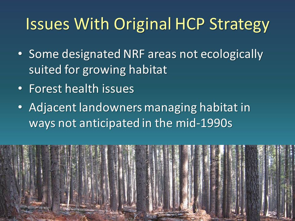 Issues With Original HCP Strategy Some designated NRF areas not ecologically suited for growing habitat Some designated NRF areas not ecologically suited for growing habitat Forest health issues Forest health issues Adjacent landowners managing habitat in ways not anticipated in the mid-1990s Adjacent landowners managing habitat in ways not anticipated in the mid-1990s