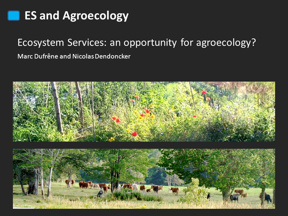 ES and Agroecology Ecosystem Services: an opportunity for agroecology.