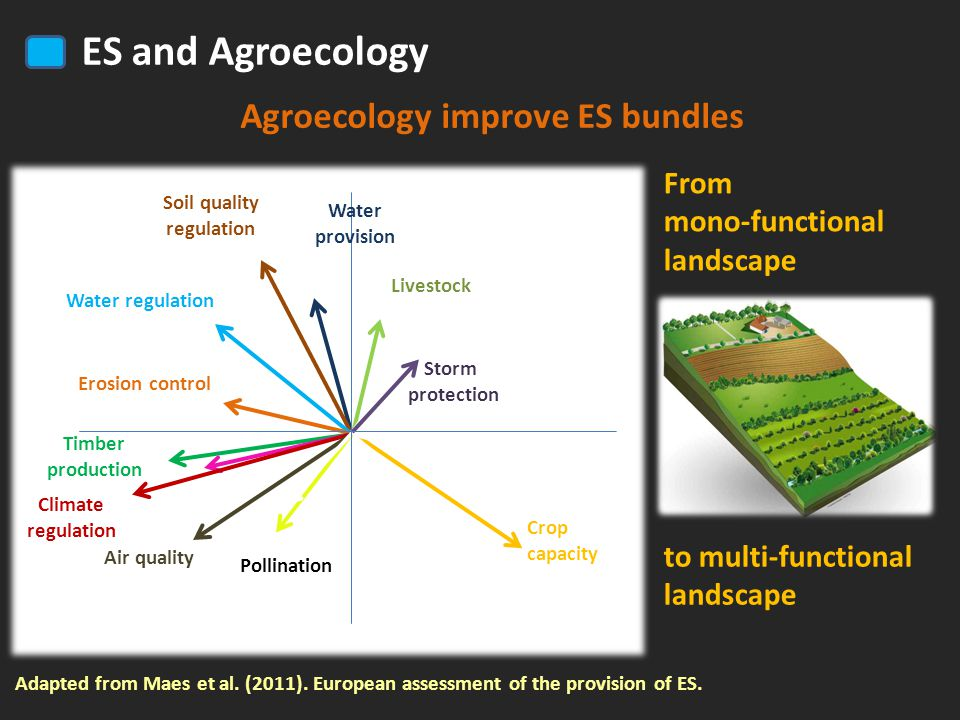 Crop capacity Storm protection Livestock Pollination Air quality Climate regulation Timber production Erosion control Water regulation Soil quality regulation Water provision Agroecology improve ES bundles ES and Agroecology From mono-functional landscape to multi-functional landscape Adapted from Maes et al.