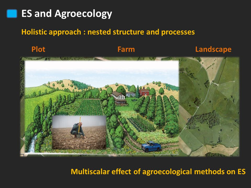 ES and Agroecology Holistic approach : nested structure and processes LandscapeFarmPlot Multiscalar effect of agroecological methods on ES