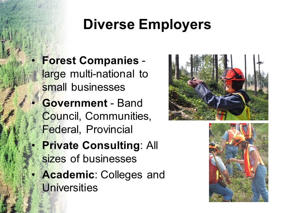 Diverse Employers Forest Companies - large multi-national to small businesses Government - Band Council, Communities, Federal, Provincial Private Cons