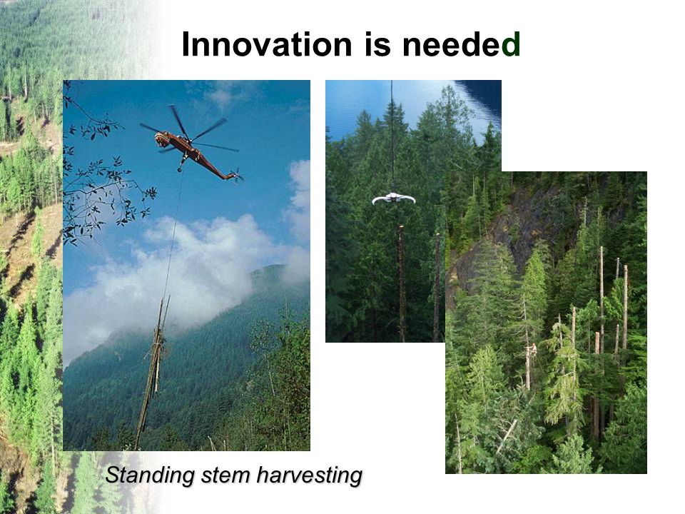 Innovation is needed Standing stem harvesting