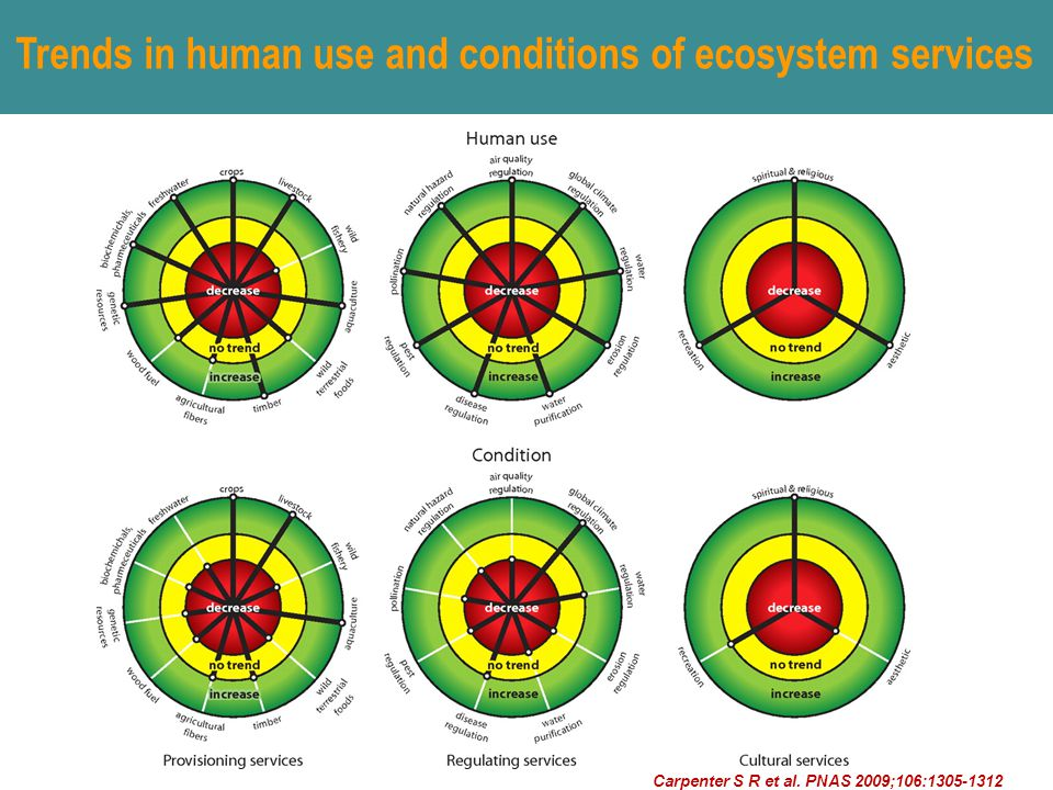 Trends in human use and conditions of ecosystem services Carpenter S R et al.