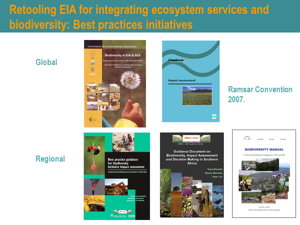Retooling EIA for integrating ecosystem services and biodiversity: Best practices initiatives Global Regional Ramsar Convention 2007.