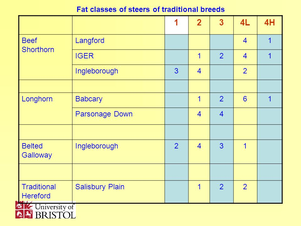 Fat classes of steers of traditional breeds 1234L4H Beef Shorthorn Langford41 IGER1241 Ingleborough342 LonghornBabcary1261 Parsonage Down44 Belted Galloway Ingleborough2431 Traditional Hereford Salisbury Plain122
