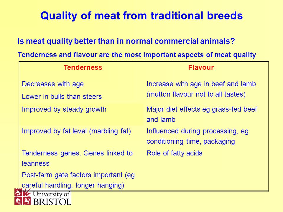 Quality of meat from traditional breeds Is meat quality better than in normal commercial animals? Tenderness and flavour are the most important aspect
