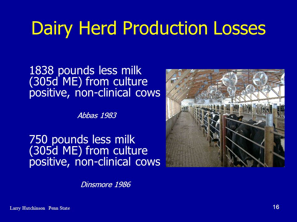 16 Dairy Herd Production Losses 1838 pounds less milk (305d ME) from culture positive, non-clinical cows Abbas 1983 750 pounds less milk (305d ME) from culture positive, non-clinical cows Dinsmore 1986 Larry Hutchinson Penn State