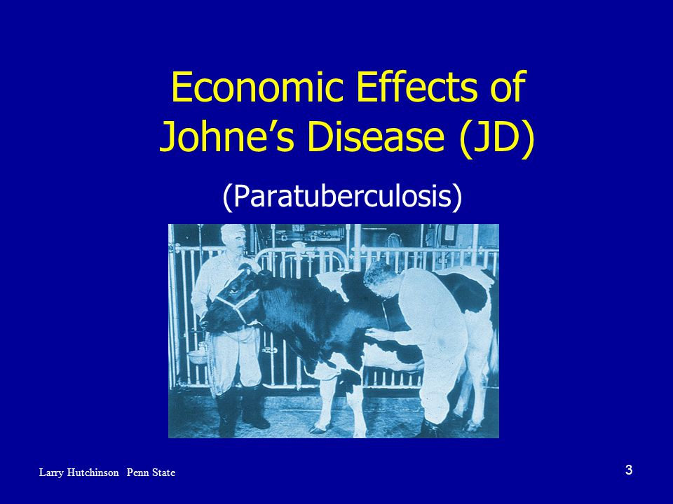 3 Economic Effects of Johne's Disease (JD) (Paratuberculosis) Larry Hutchinson Penn State