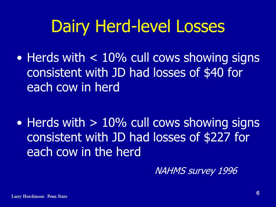 6 Dairy Herd-level Losses Herds with < 10% cull cows showing signs consistent with JD had losses of $40 for each cow in herd Herds with > 10% cull cows showing signs consistent with JD had losses of $227 for each cow in the herd NAHMS survey 1996 Larry Hutchinson Penn State