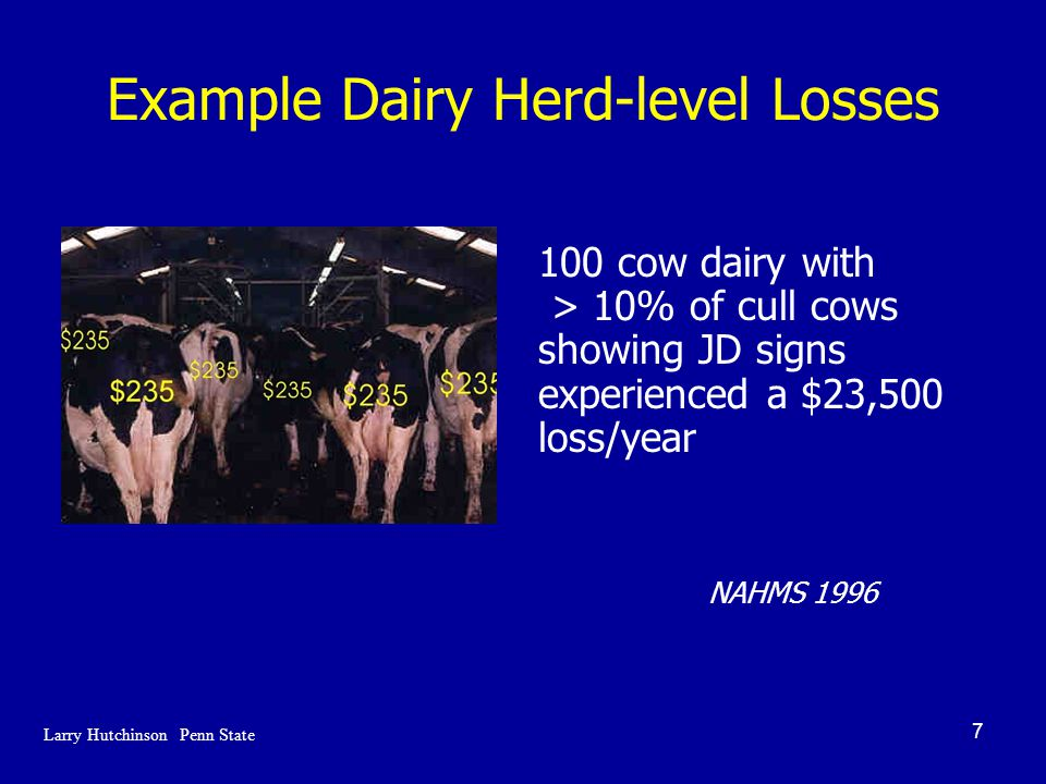 7 Example Dairy Herd-level Losses 100 cow dairy with > 10% of cull cows showing JD signs experienced a $23,500 loss/year NAHMS 1996 Larry Hutchinson Penn State