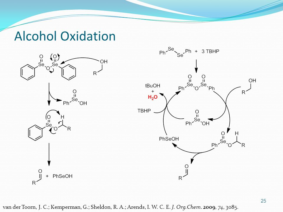 25 Alcohol Oxidation van der Toorn, J.C.; Kemperman, G.; Sheldon, R.