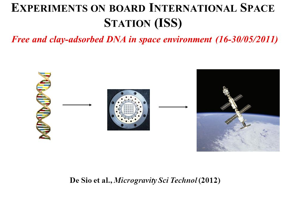 E XPERIMENTS ON BOARD I NTERNATIONAL S PACE S TATION (ISS) Free and clay-adsorbed DNA in space environment (16-30/05/2011) De Sio et al., Microgravity