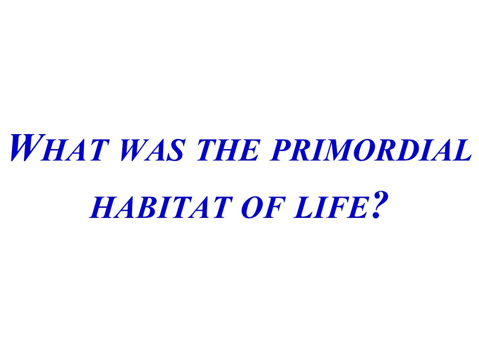 W HAT WAS THE PRIMORDIAL HABITAT OF LIFE ?