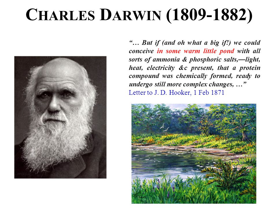 "C HARLES D ARWIN (1809-1882) ""… But if (and oh what a big if!) we could conceive in some warm little pond with all sorts of ammonia & phosphoric salts"