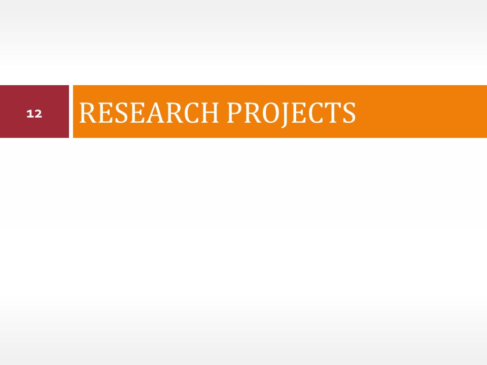 RESEARCH PROJECTS 12