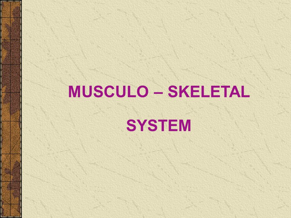 MUSCULO – SKELETAL SYSTEM