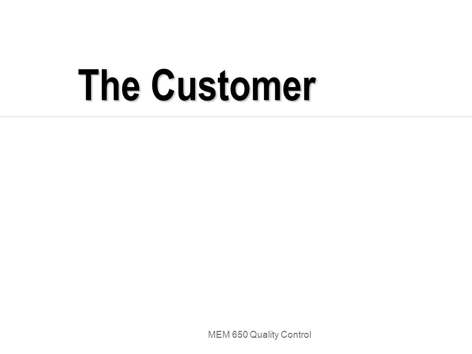 MEM 650 Quality Control The Customer