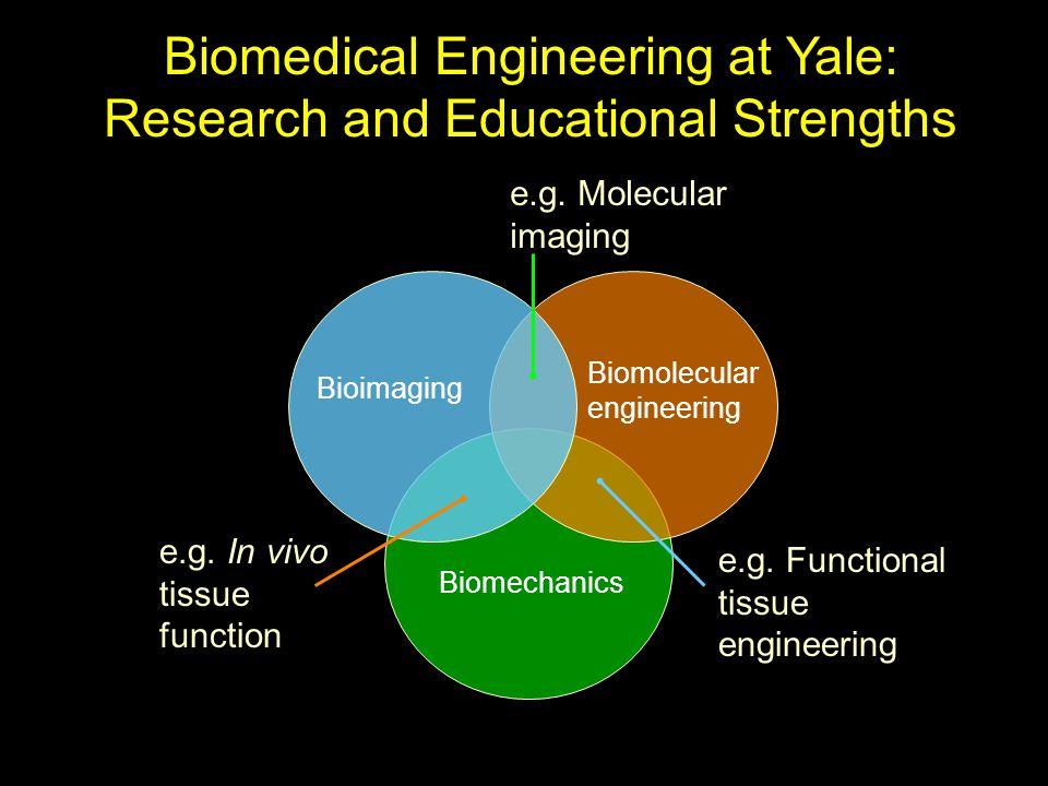 Biomedical Engineering at Yale: Research and Educational Strengths Biomechanics Biomolecular engineering Bioimaging e.g.