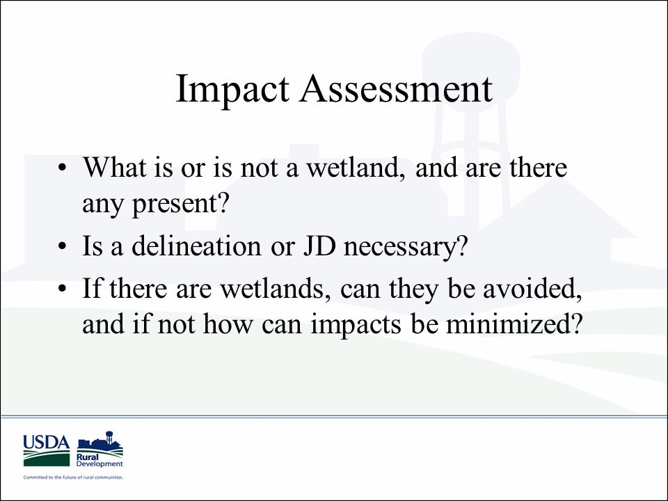 Impact Assessment What is or is not a wetland, and are there any present.