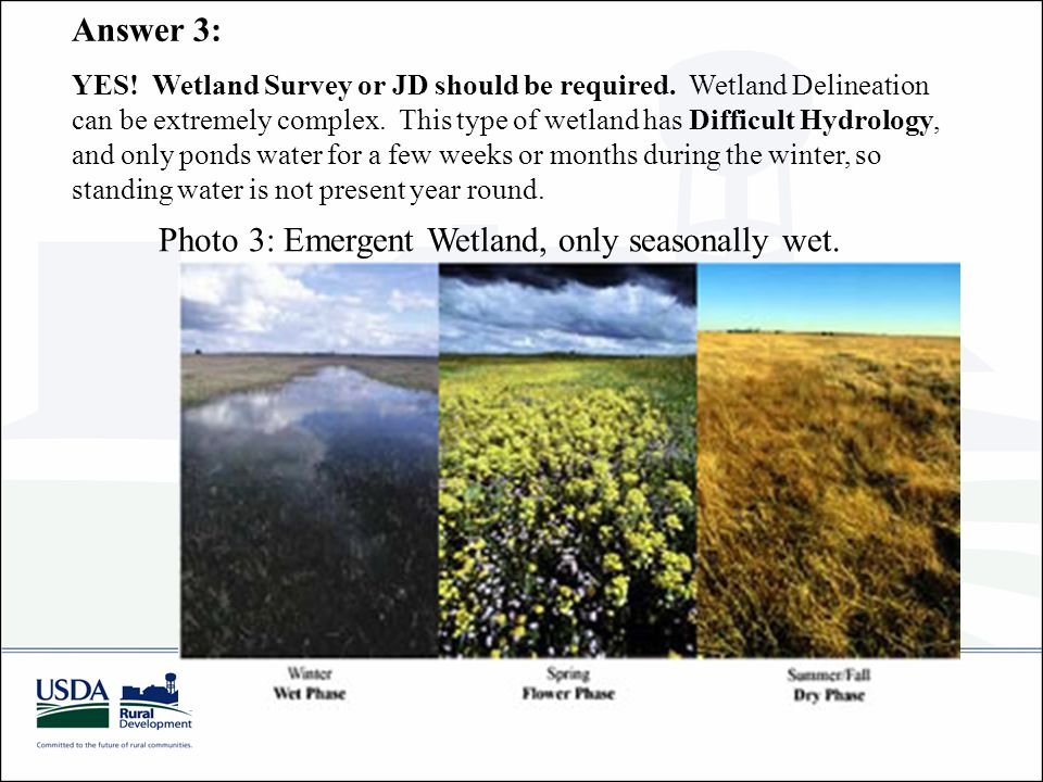 Answer 3: YES. Wetland Survey or JD should be required.