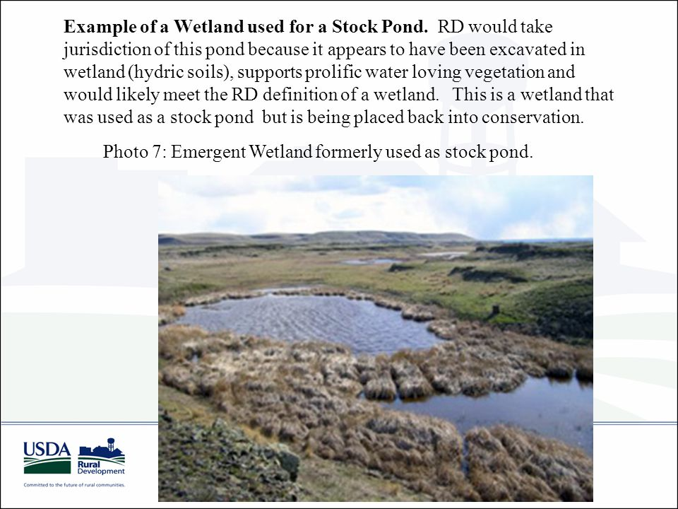 Example of a Wetland used for a Stock Pond.