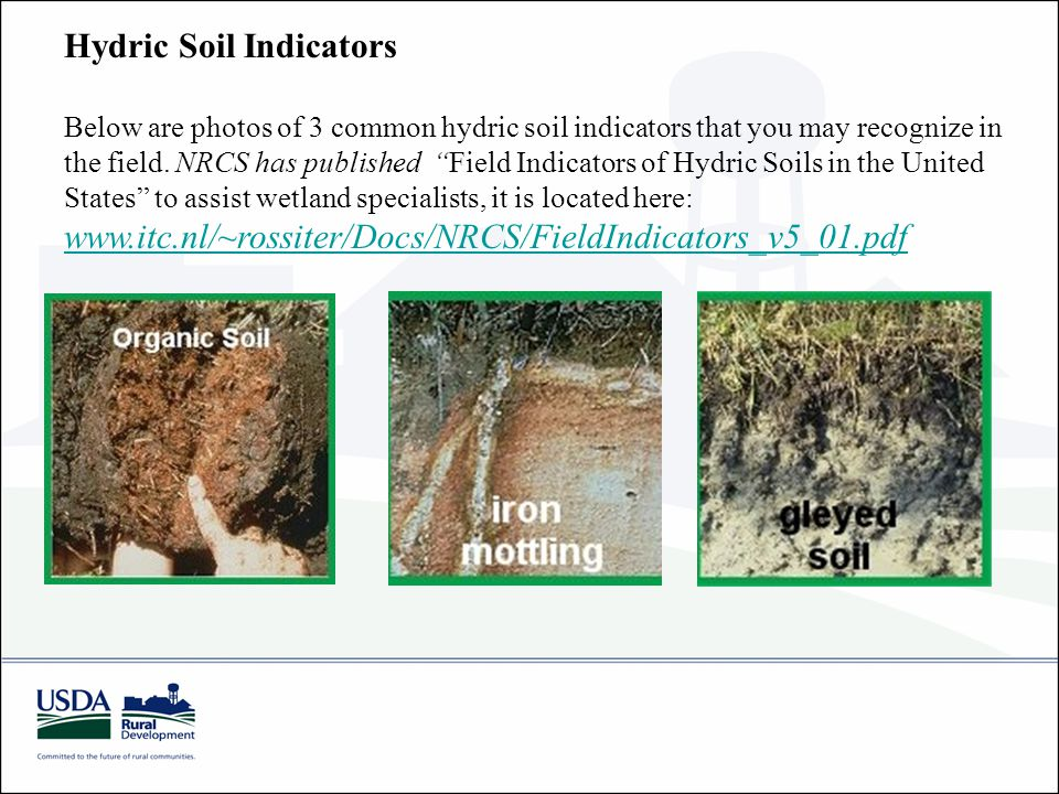 Hydric Soil Indicators Below are photos of 3 common hydric soil indicators that you may recognize in the field.