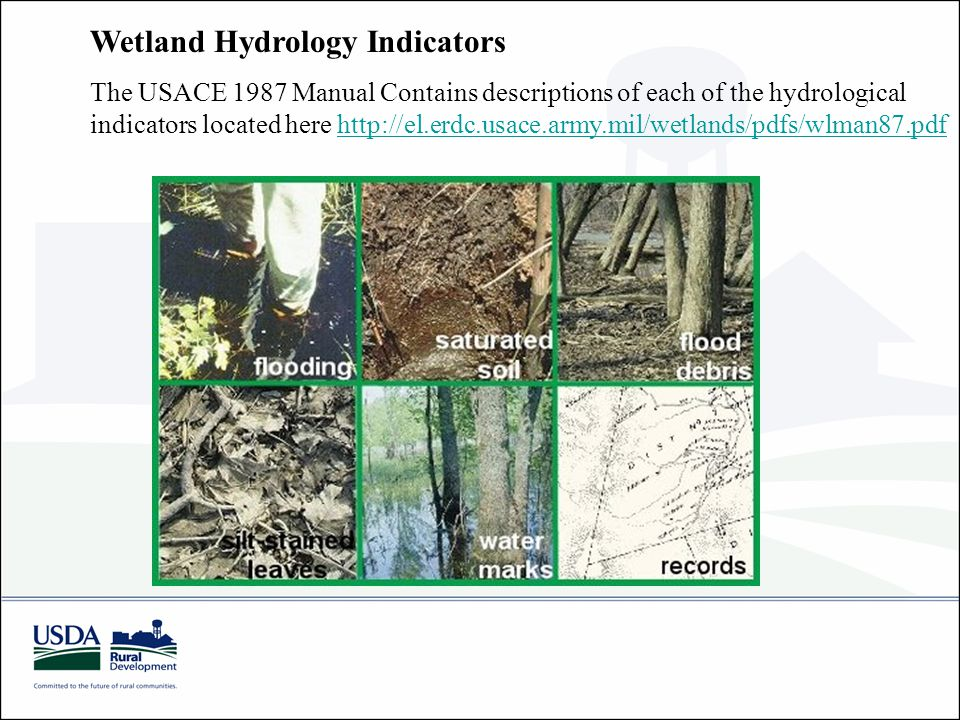 Wetland Hydrology Indicators The USACE 1987 Manual Contains descriptions of each of the hydrological indicators located here http://el.erdc.usace.army.mil/wetlands/pdfs/wlman87.pdfhttp://el.erdc.usace.army.mil/wetlands/pdfs/wlman87.pdf