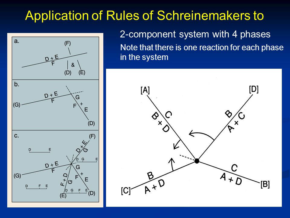 Application of Rules of Schreinemakers to 2-component system with 4 phases Note that there is one reaction for each phase in the system