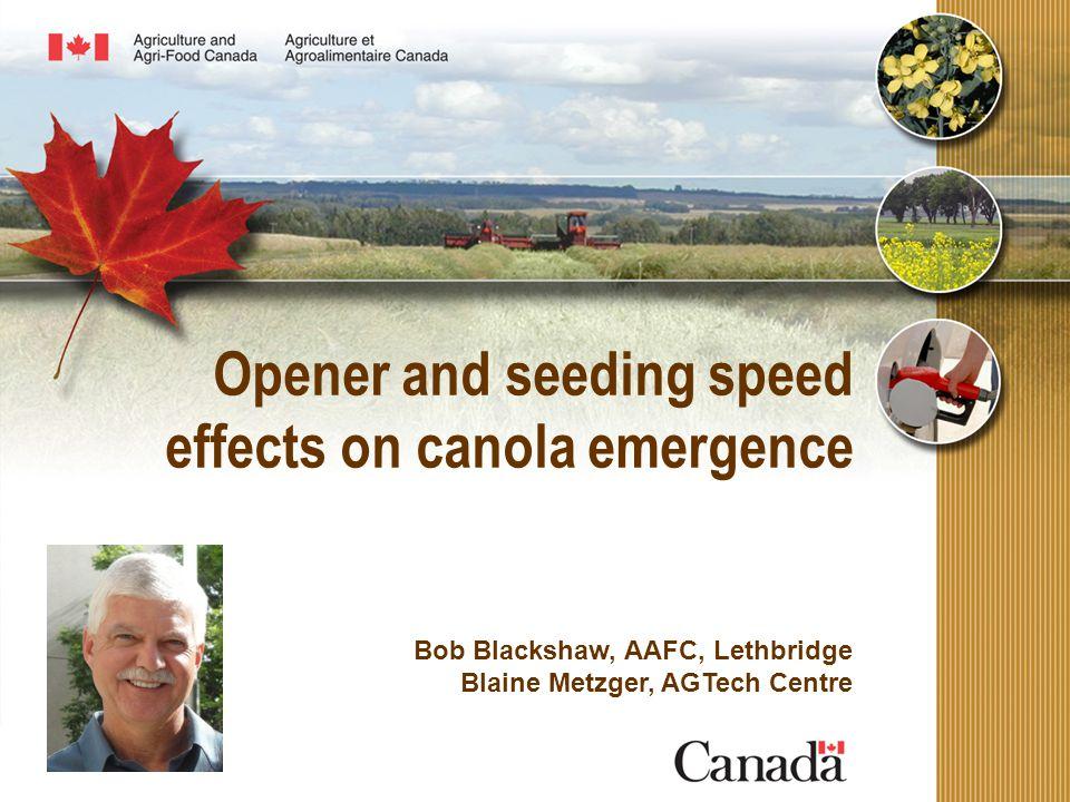 Opener and seeding speed effects on canola emergence Bob Blackshaw, AAFC, Lethbridge Blaine Metzger, AGTech Centre
