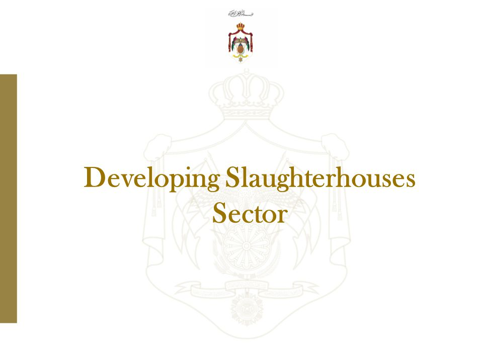 Developing Slaughterhouses Sector