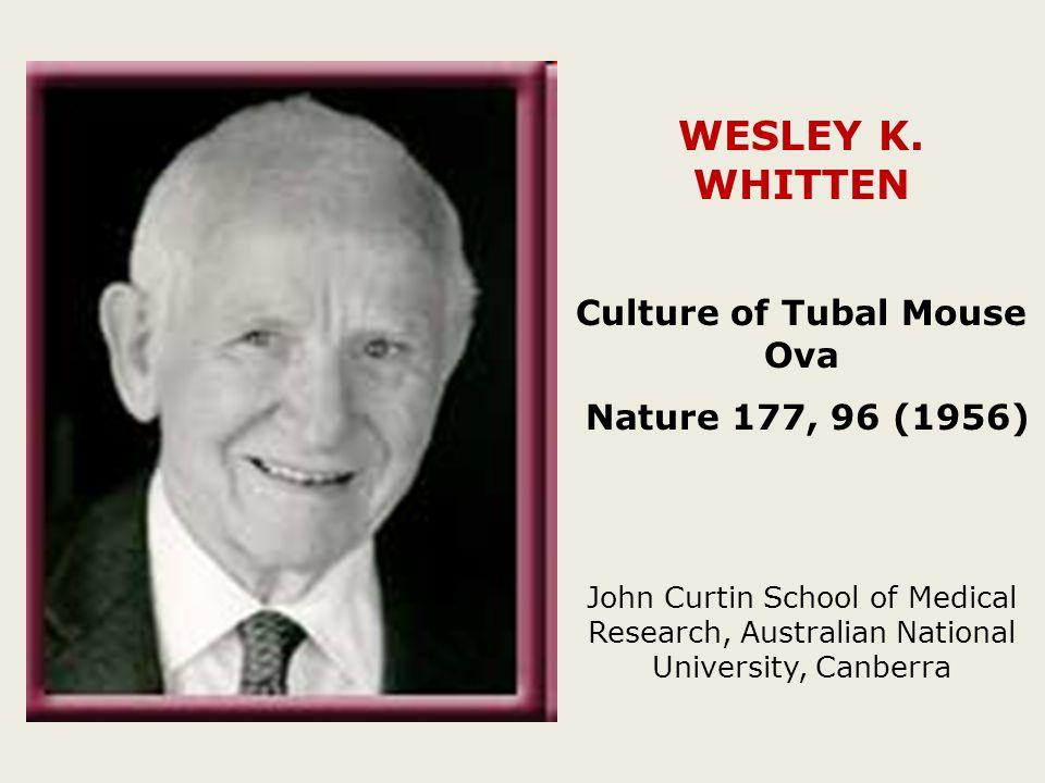 WESLEY K.