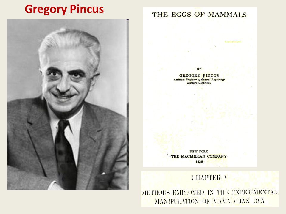 Gregory Pincus