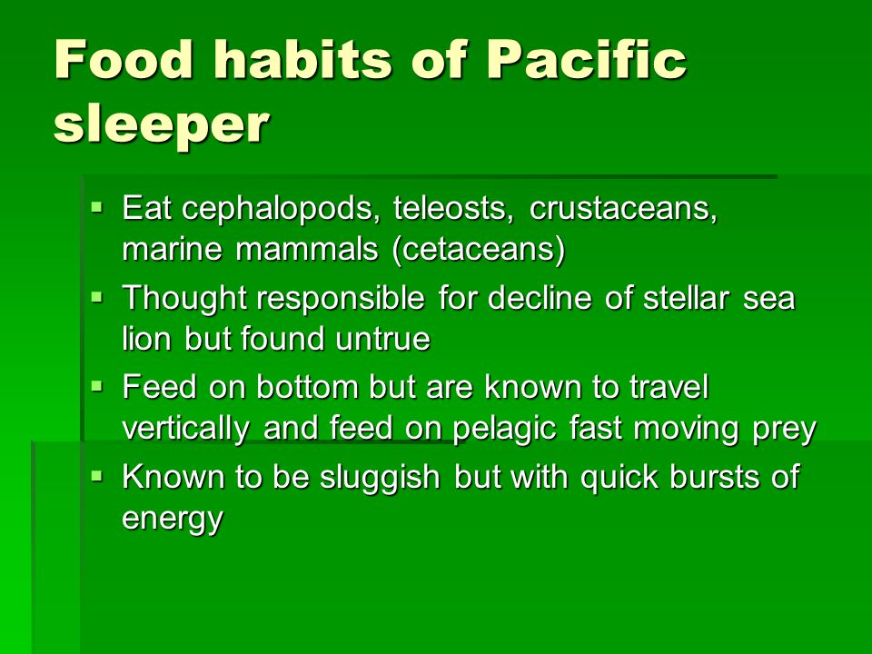 Food habits of Pacific sleeper  Eat cephalopods, teleosts, crustaceans, marine mammals (cetaceans)  Thought responsible for decline of stellar sea lion but found untrue  Feed on bottom but are known to travel vertically and feed on pelagic fast moving prey  Known to be sluggish but with quick bursts of energy