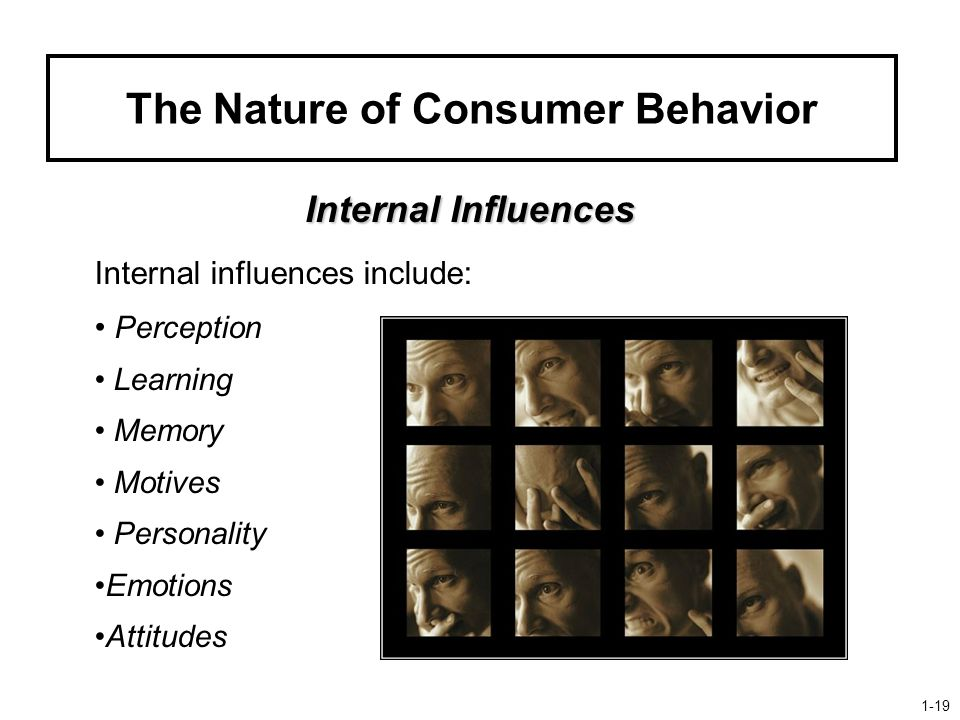 The Nature of Consumer Behavior Internal Influences Internal influences include: Perception Learning Memory Motives Personality Emotions Attitudes 1-19