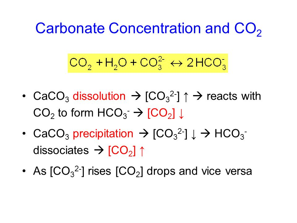 Carbonate Concentration and CO 2 CaCO 3 dissolution  [CO 3 2- ] ↑  reacts with CO 2 to form HCO 3 -  [CO 2 ] ↓ CaCO 3 precipitation  [CO 3 2- ] ↓