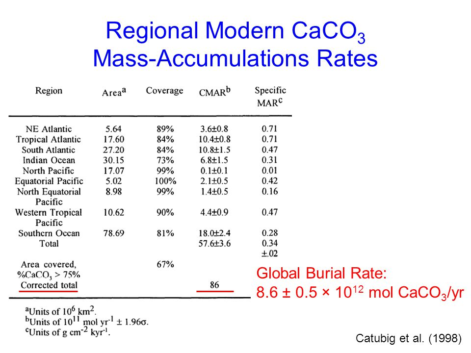 Regional Modern CaCO 3 Mass-Accumulations Rates Catubig et al. (1998) Global Burial Rate: 8.6 ± 0.5 × 10 12 mol CaCO 3 /yr