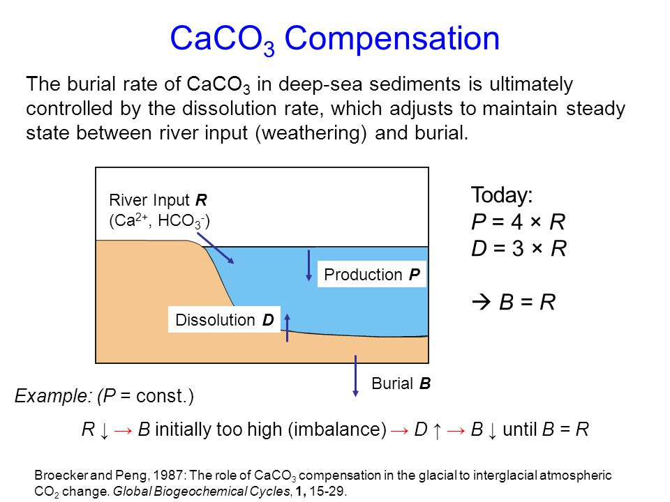 CaCO 3 Compensation River Input R (Ca 2+, HCO 3 - ) Production P Dissolution D Burial B Today: P = 4 × R D = 3 × R  B = R The burial rate of CaCO 3 i