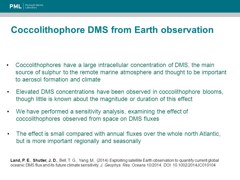 Coccolithophore DMS from Earth observation Coccolithophores have a large intracellular concentration of DMS, the main source of sulphur to the remote marine atmosphere and thought to be important to aerosol formation and climate Elevated DMS concentrations have been observed in coccolithophore blooms, though little is known about the magnitude or duration of this effect The effect is small compared with annual fluxes over the whole north Atlantic, but is more important regionally and seasonally We have performed a sensitivity analysis, examining the effect of coccolithophores observed from space on DMS fluxes Land, P.