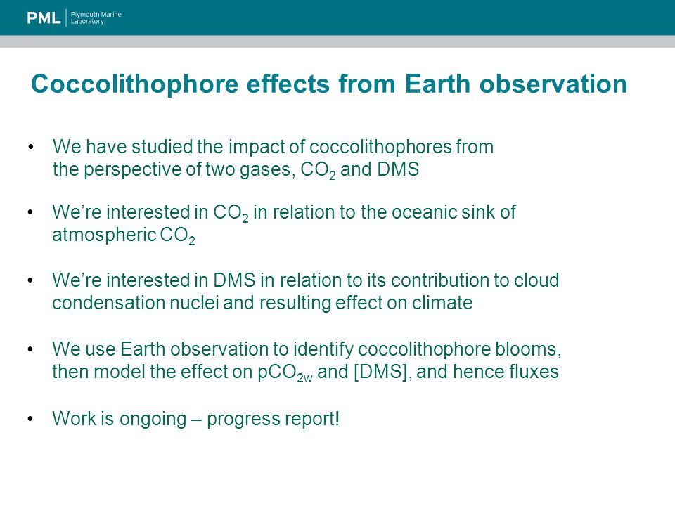 Conclusions We used Earth observation, model and in situ data to estimate the effect of coccolithophores on CO 2 and DMS fluxes in the N Atlantic It is important to account for the effect of calcification on the N Atlantic CO 2 sink Coccolithophores seem less important to DMS fluxes, but further work is needed to constrain the effect If not estimated, it should at least be included as a source of uncertainty