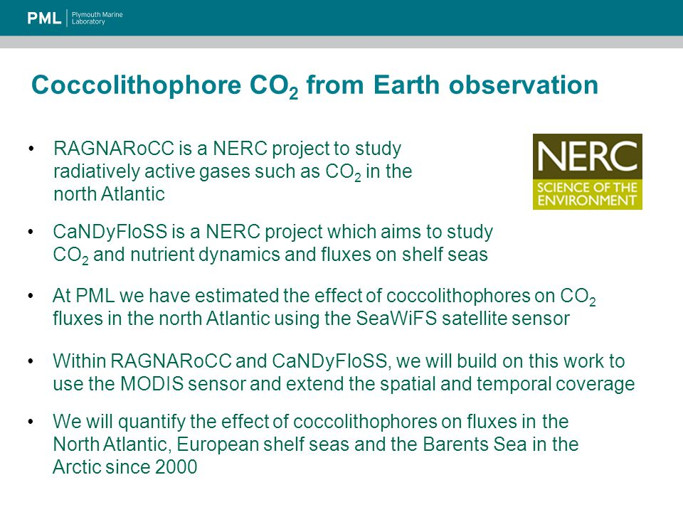 Coccolithophore CO 2 from Earth observation RAGNARoCC is a NERC project to study radiatively active gases such as CO 2 in the north Atlantic CaNDyFloSS is a NERC project which aims to study CO 2 and nutrient dynamics and fluxes on shelf seas At PML we have estimated the effect of coccolithophores on CO 2 fluxes in the north Atlantic using the SeaWiFS satellite sensor Within RAGNARoCC and CaNDyFloSS, we will build on this work to use the MODIS sensor and extend the spatial and temporal coverage We will quantify the effect of coccolithophores on fluxes in the North Atlantic, European shelf seas and the Barents Sea in the Arctic since 2000